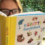 GrutteFoarlesboek